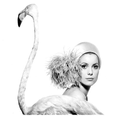 Catherine Deneuve por David Bailey para Vogue em 11 de Janeiro de 1961.